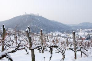 Winter Furth bei Göttweig