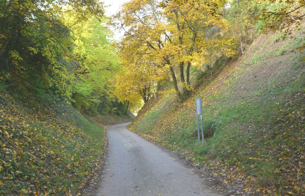 """""""Further Kellertage"""" im Keller- und Zellergraben"""