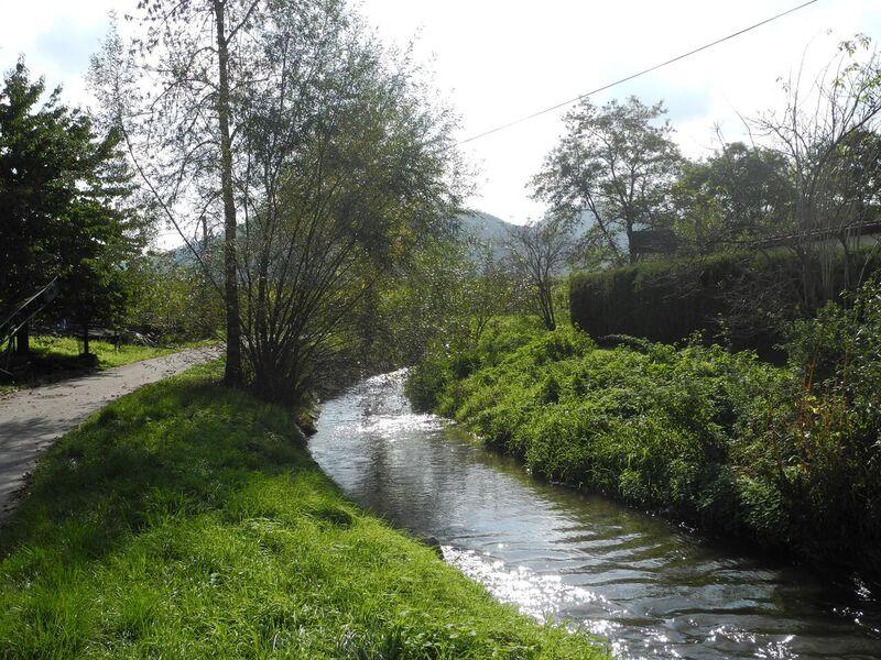 Frühjahrsputz Fladnitz (Müllsammelaktion)