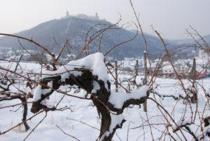 Furth im Winter